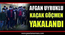 Afgan uyruklu kaçak göçmen yakalandı